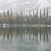 Snowfall and larch trees on Mary Lake, near Lake O'Hara in the Canadian Rockies.